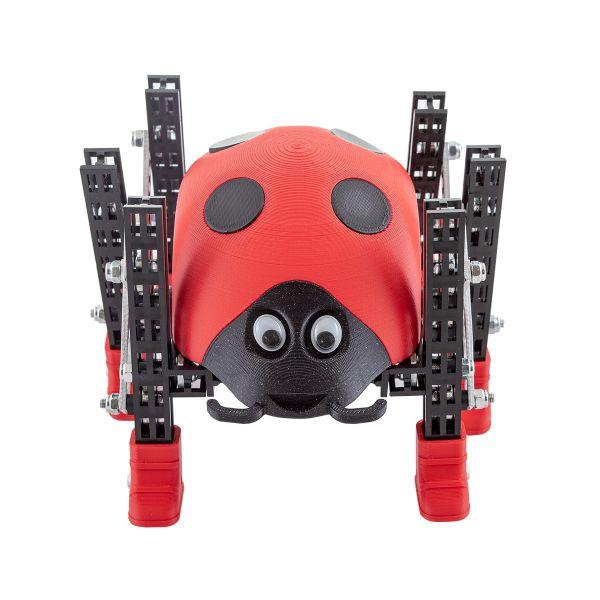 Totem Ladybug Roboter-Bausatz