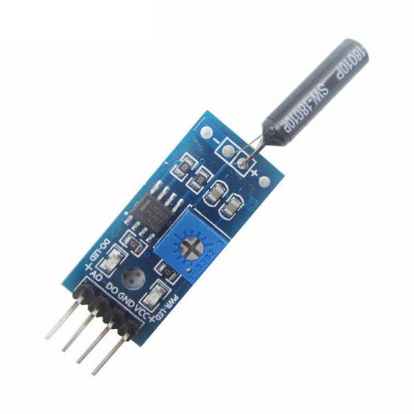 SW18010P Vibration/Erschütterungssensor